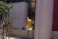 Oblong & Round Rainwater Tank - Paperbark