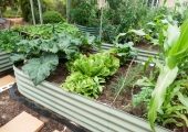 Raised-Garden-Beds-Perth