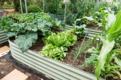 Raised-Garden-Beds-Perth