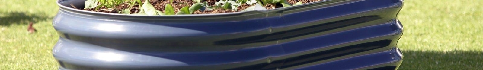 Using Rainwater Tanks and Other Tips for Gardens with Edible Plants