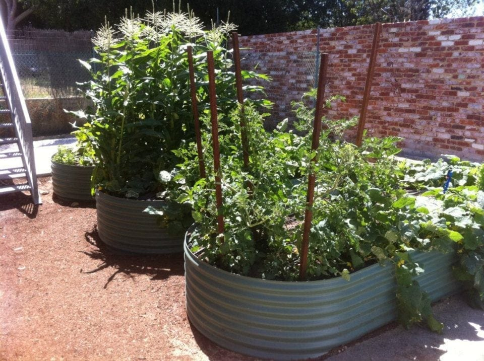 Oblong Planters Perth Wa Rainfill Tanks And Curved