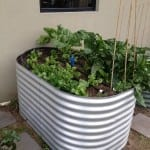 Rectangular Raised Garden Bed – 800 High Zincalume